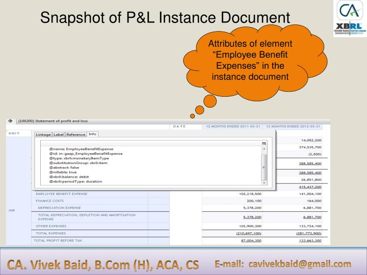 Snapshot of P&L Instance Document