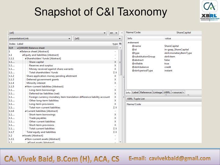 Snapshot of C&I Taxonomy