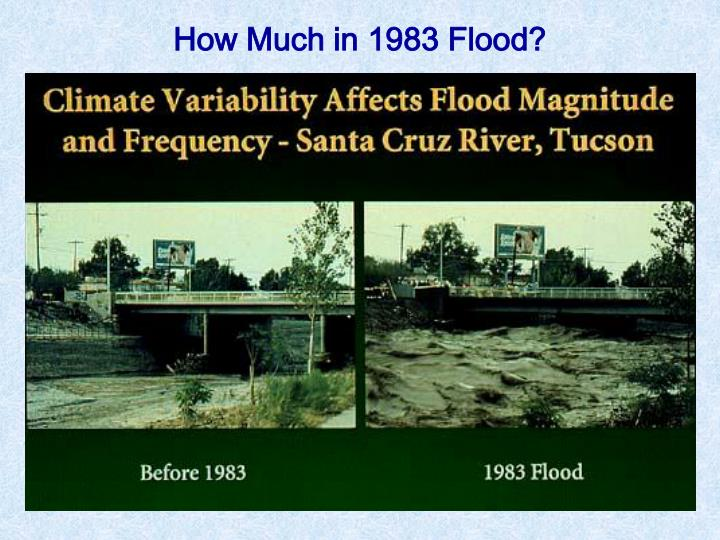 How Much in 1983 Flood?