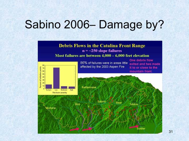 Sabino 2006– Damage by?