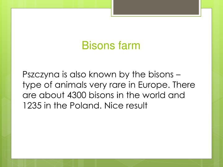 Bisons farm