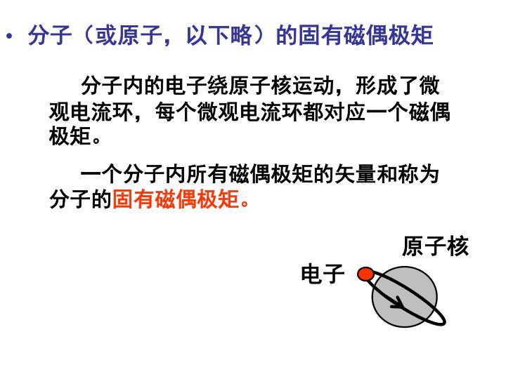 分子(或原子,以下略)的固有磁偶极矩