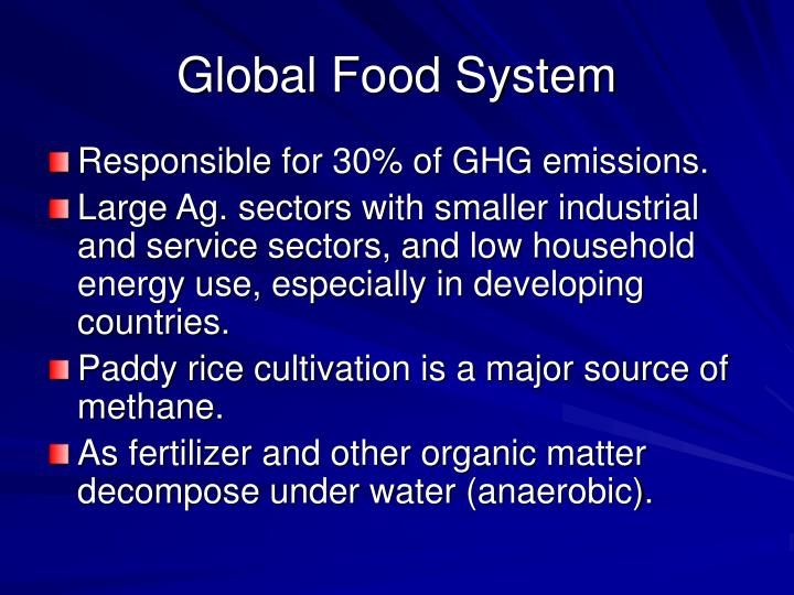 Global Food System