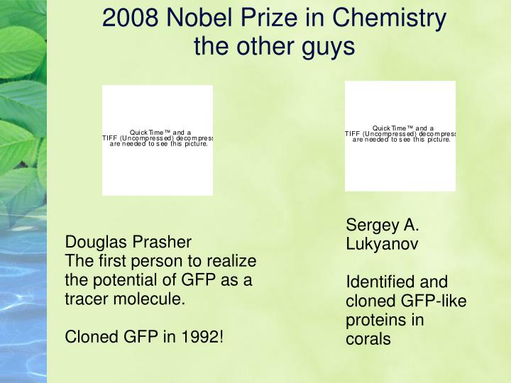2008 nobel prize in chemistry the other guys