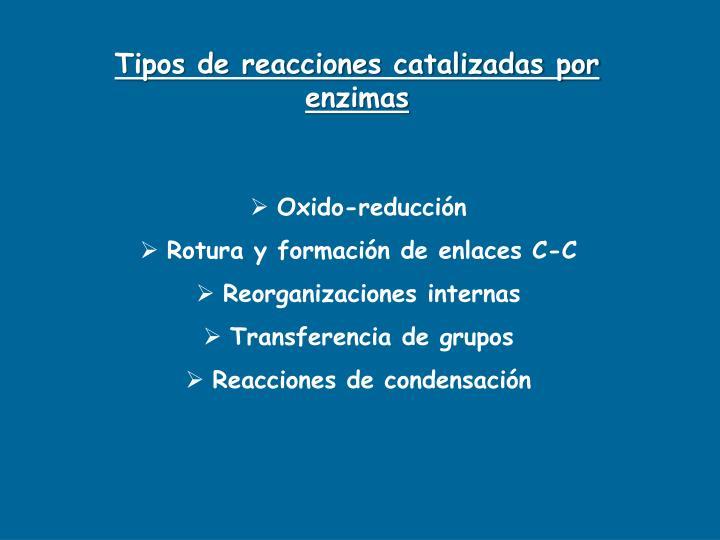 Tipos de reacciones catalizadas por enzimas