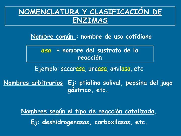 NOMENCLATURA Y CLASIFICACIÓN DE ENZIMAS