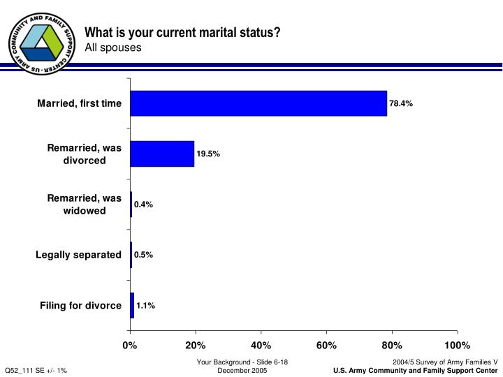What is your current marital status?