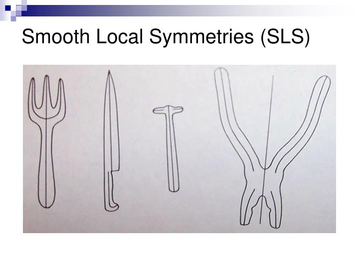 Smooth Local Symmetries (SLS)