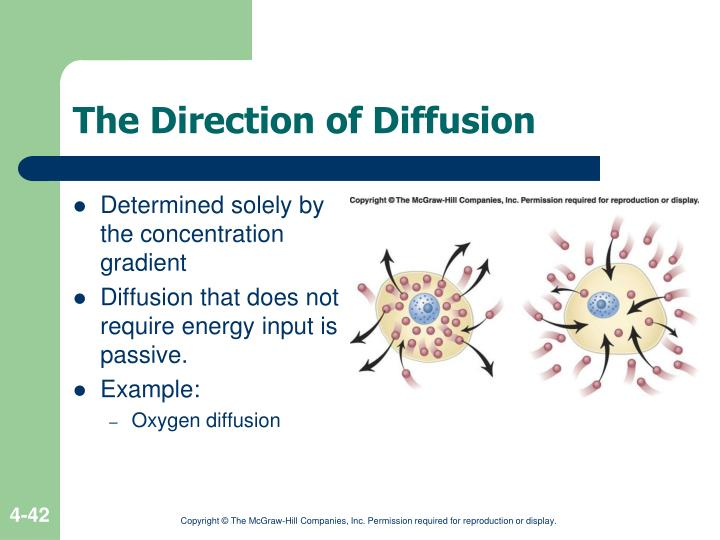 The Direction of Diffusion