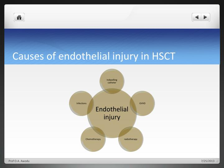 Causes of endothelial injury in HSCT