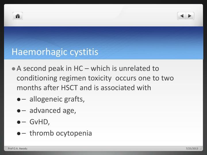 Haemorhagic