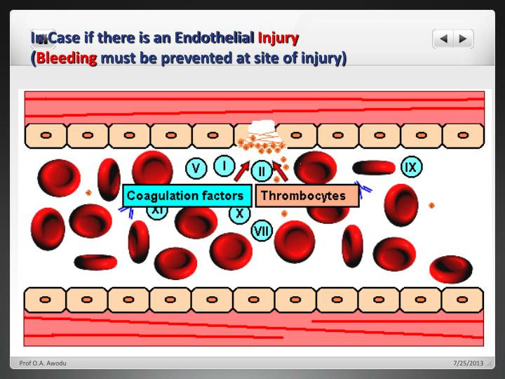 In Case if there is an Endothelial