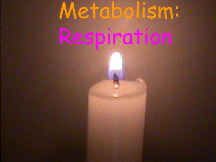Metabolism: