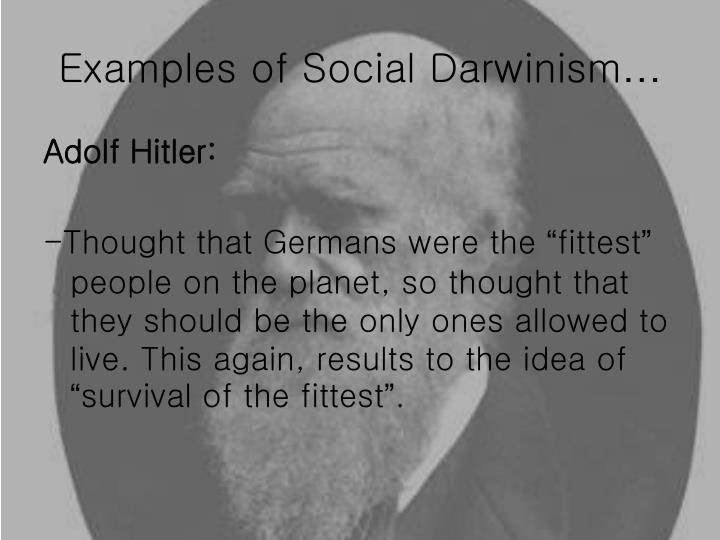 survival of the fittest darwin essays Survival of the fittest in the commonly used animal sense is not a theory or principle for a time-binding being this theory is only for the physical bodies of animals its effect upon humanity is sinister and degrading we see the principle at work all about us in criminal exploitation and profiteering.