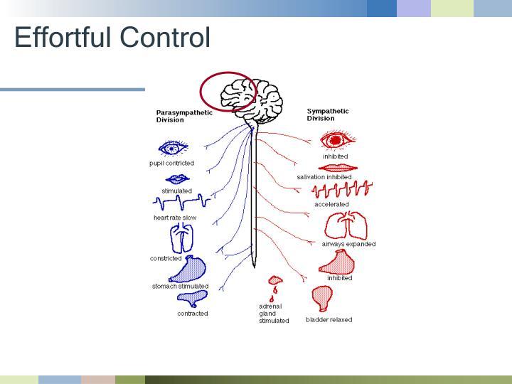 Effortful Control