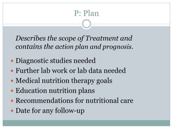 P: Plan