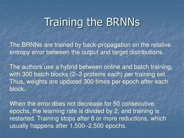 Training the BRNNs