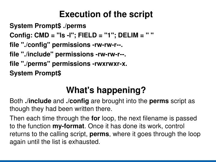 Execution of the script