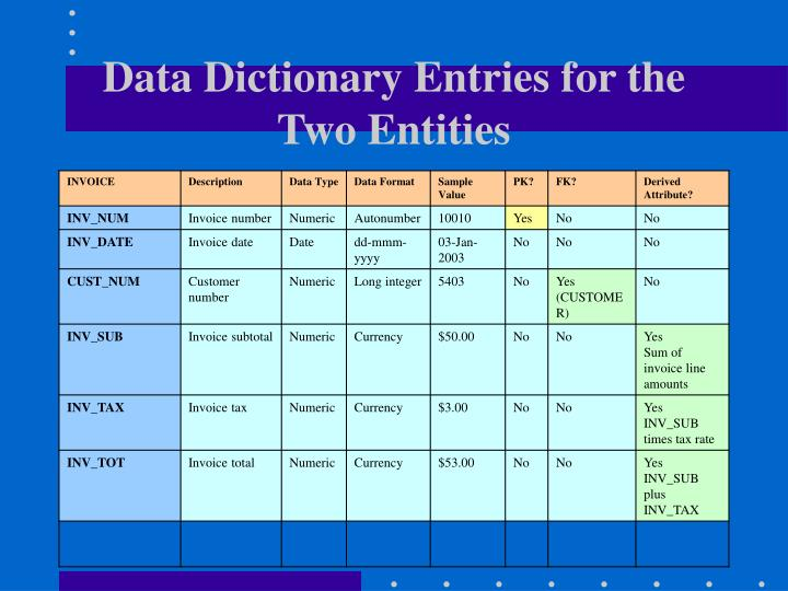Data Dictionary Entries for the Two Entities
