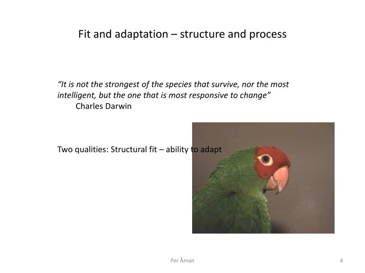 Fit and adaptation structure and process