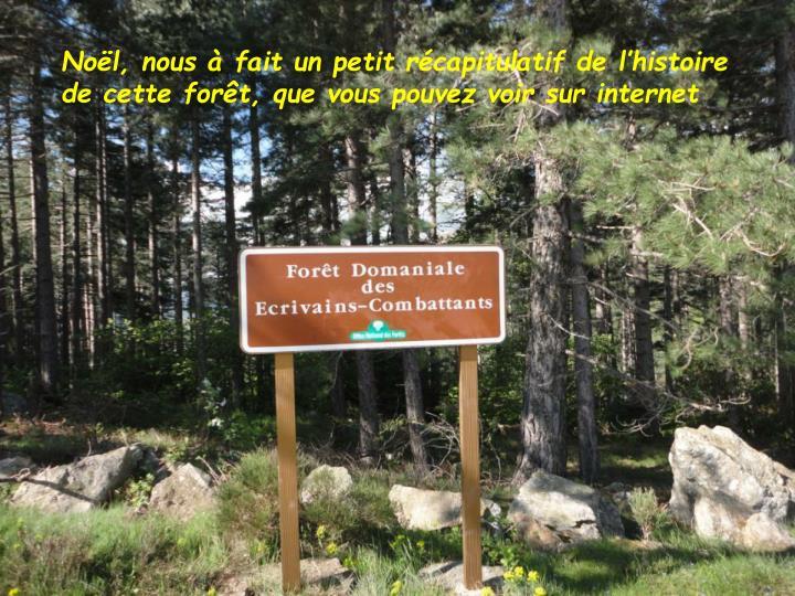 Noël, nous à fait un petit récapitulatif de l'histoire de cette forêt, que vous pouvez voir sur internet