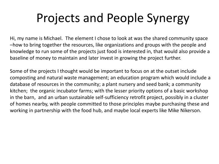 Hi, my name is Michael.  The element I chose to look at was the shared community space –how to bring together the resources, like organizations and groups with the people and knowledge to run some of the projects just food is interested in, that would also provide a baseline of money to maintain and later invest in growing the project further.