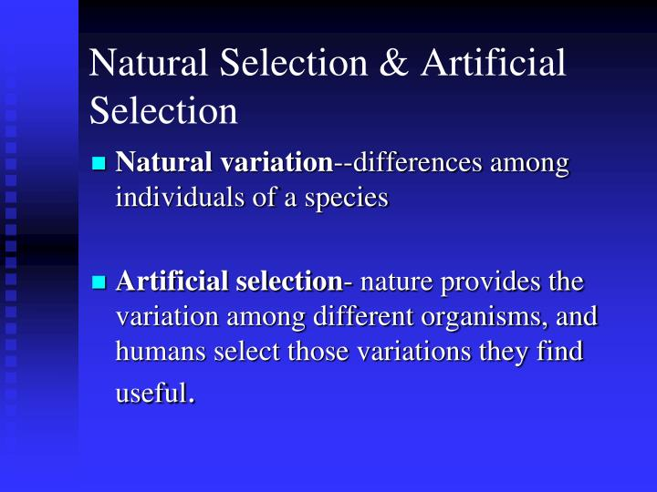 Natural Selection & Artificial Selection