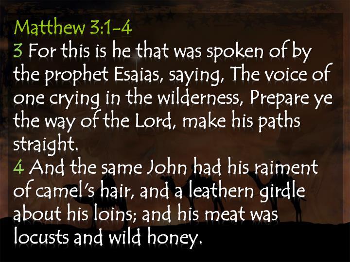 Matthew 3:1-4