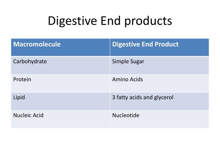 Digestive End products