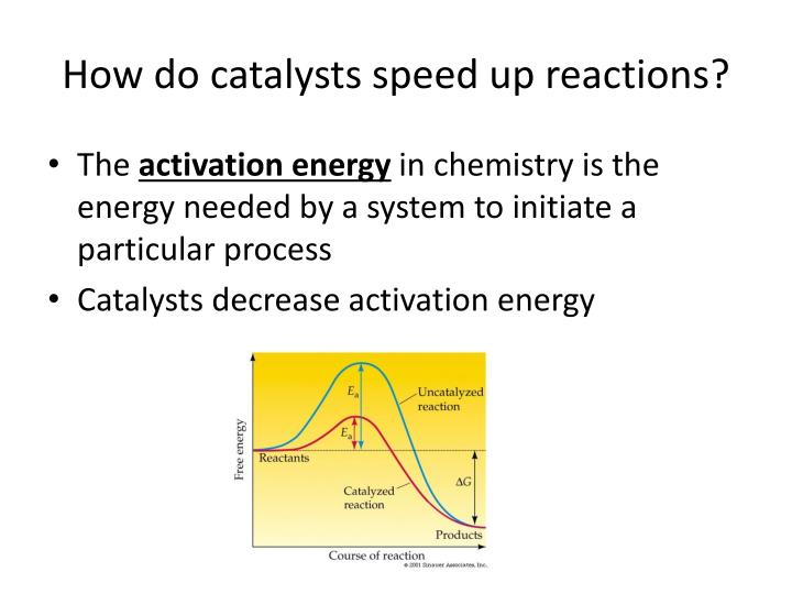 How do catalysts speed up reactions
