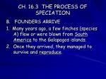 ch 16 3 the process of speciation14