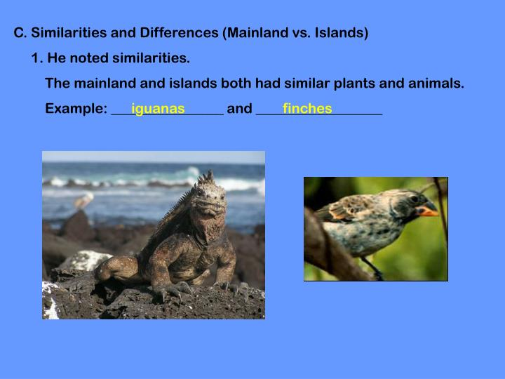 C. Similarities and Differences (Mainland vs. Islands)