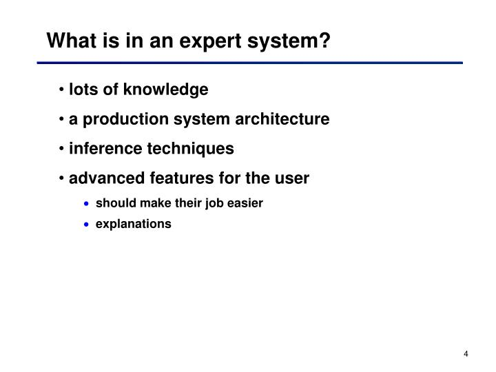 What is in an expert system?