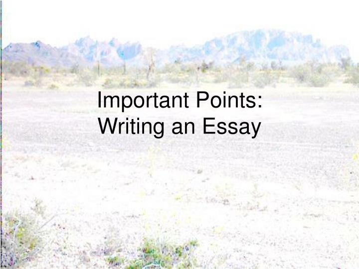 important points of an essay