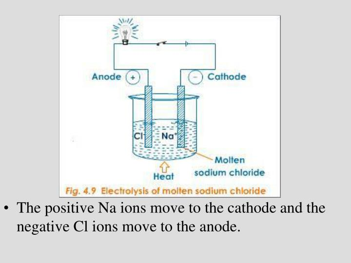 The positive Na ions move to the cathode and the negative Cl ions move to the anode.