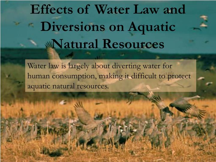 effects of water resources Our rivers, lakes, aquifers, and coastal waters aren't unlimited resources that can handle whatever we take out or dump in these waters need protection nrdc pressures the federal government to .