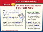 the free enterprise system the profit motive