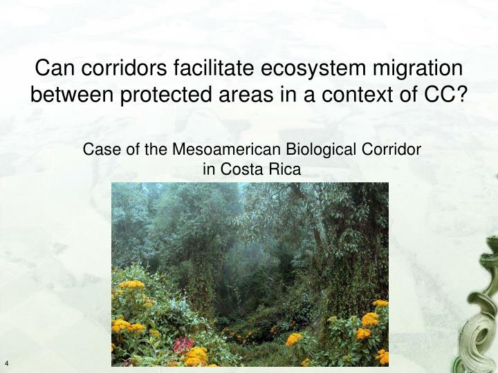 Can corridors facilitate ecosystem migration between protected areas in a context of CC?