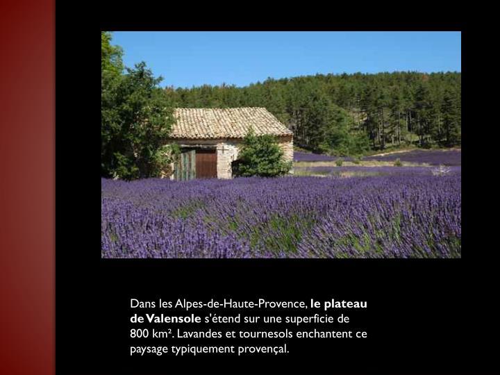 Dans les Alpes-de-Haute-Provence,