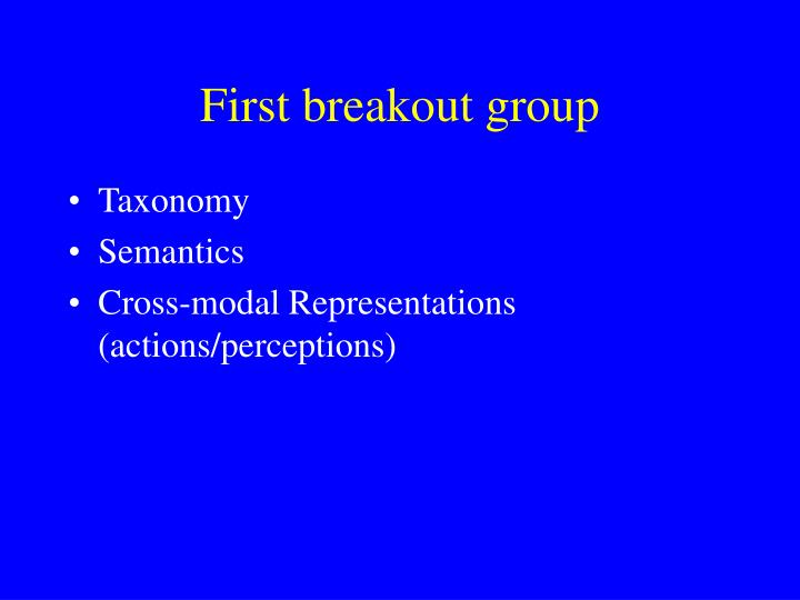 First breakout group