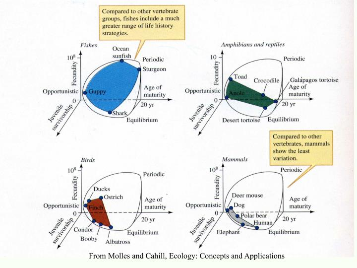 From Molles and Cahill, Ecology: Concepts and Applications
