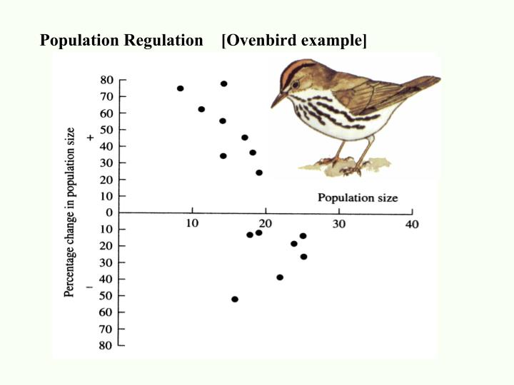 Population Regulation    [Ovenbird example]