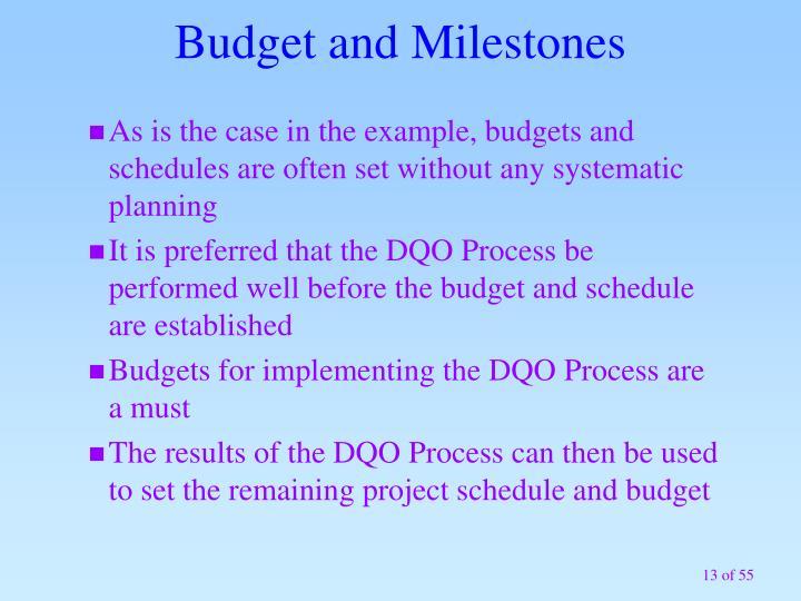 Budget and Milestones