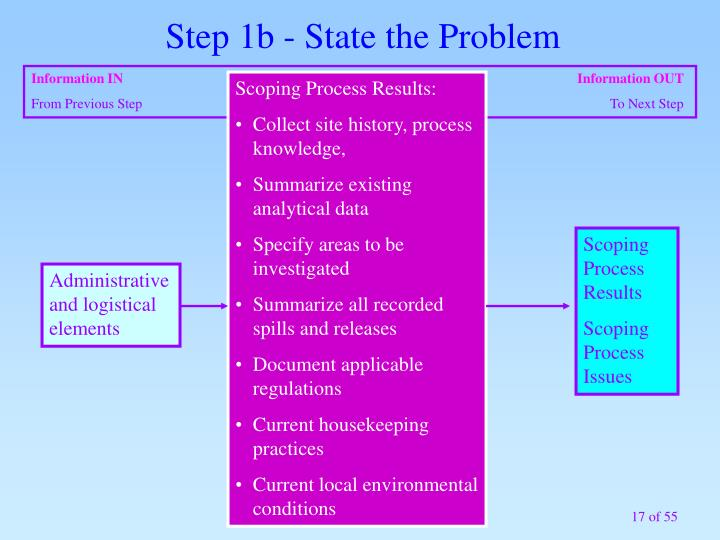 Step 1b - State the Problem