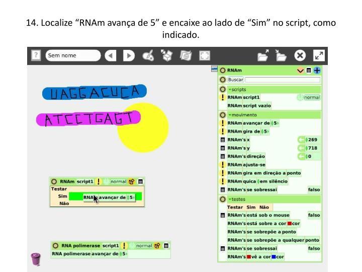14. Localize RNAm avana de 5 e encaixe ao lado de Sim no script, como indicado.