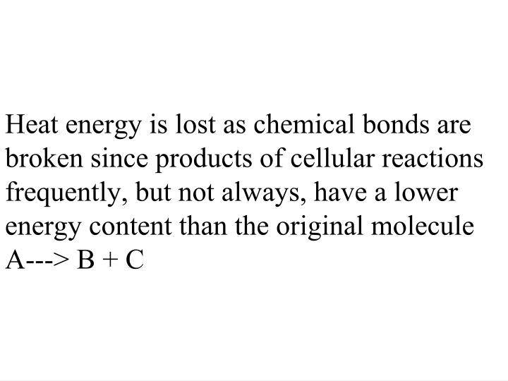 Heat energy is lost as chemical bonds are broken since products of cellular reactions frequently, but not always, have a lower energy content than the original molecule