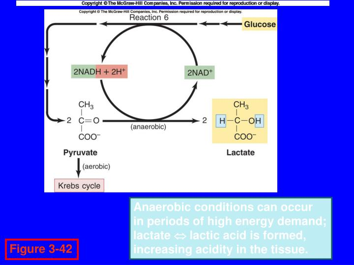 Anaerobic conditions can occur