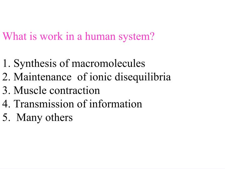What is work in a human system?