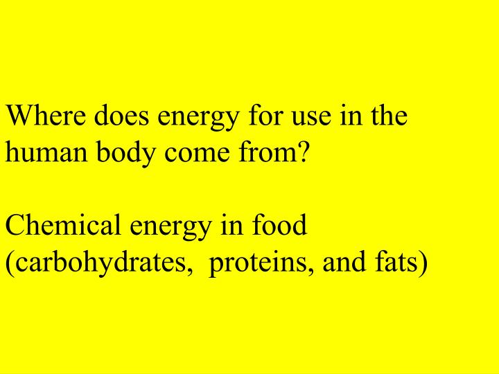 Where does energy for use in the human body come from?