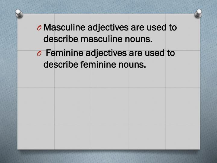 Masculine adjectives are used to describe masculine nouns.